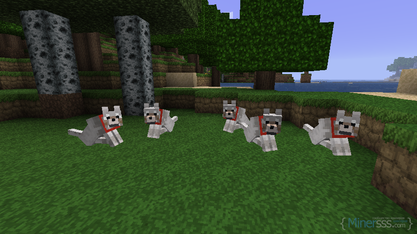 minecraft_dogs_by_pac_miamd3cyuki